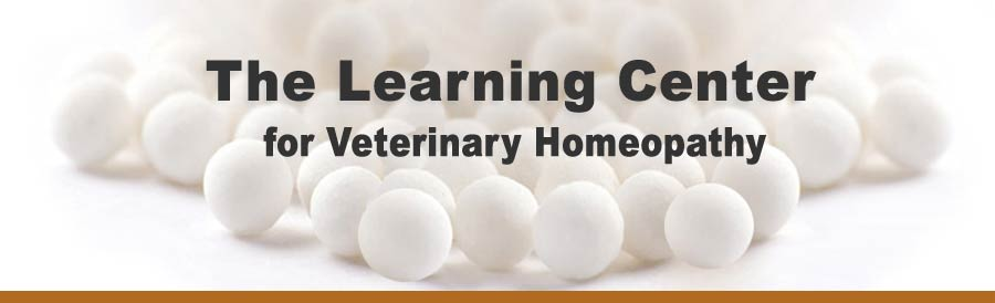 Veterinary Homeopathy Banner